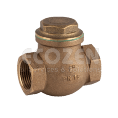 Van một chiều Genebre 3186- PTFE swing check valve
