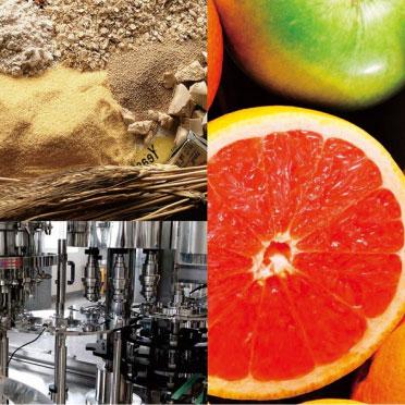 ngành thực phẩm và đồ uống